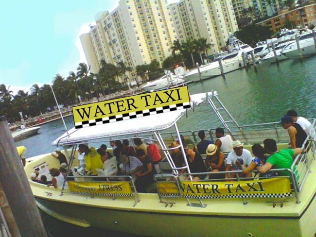 Miami Sightseeing by Water Taxi