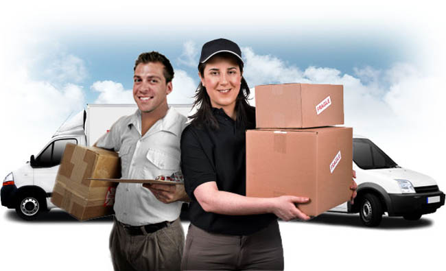 Couriers Services